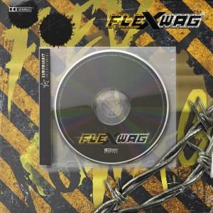 album cover image - .zip z02