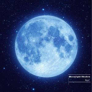 album cover image - 달빛 그림자